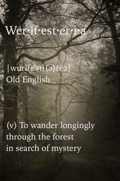 the-hanging-garden:  Werifesteria