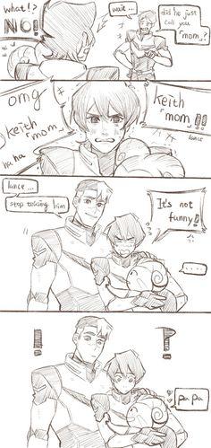 jin-06: keith mom - ice bear enjoys basking