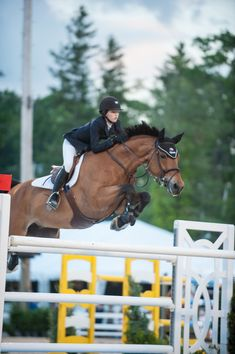 Five athletes have been chosen to represent Team USA for the latest FEI Jumping Nations Cup™ competition in Ireland. Show Jumping Horses, Show Horses, Equestrian Outfits, Equestrian Style, Horse Training, Horse Girl, Horse Pictures, Team Usa, Horseback Riding