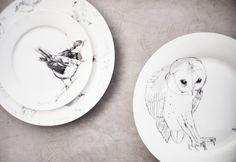 Edwyn Collins Ceramics