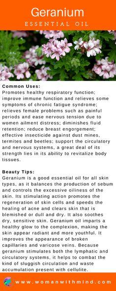 Geranium Essential Oil Guide & Application #essentialoils #diybeauty #EssentialOilBlends