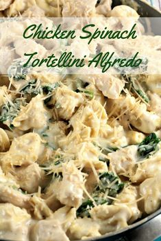 Chicken Spinach Tortellini Alfredo is chicken, jar sauce, milk, cheese tortellini, spinach and Parmesan cheese and is on the table in about 30 minutes! Tortellini Chicken Alfredo, Cheese Tortellini Recipes, Tortellini Pasta, Pasta Recipes, Chicken Recipes, Cooking Recipes, Dinner Recipes, Turkey Recipes, Meat Recipes