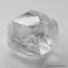 Recently mined exclusive rough diamonds for jewelry: Buy rough diamonds that includes rare mackle, octahedron, tetra hexahedron and triangle shape gem diamonds etc. Uncut Diamond, Rough Diamond, Diamond Gemstone, Gem Diamonds, Natural Diamonds, Making Extra Cash, Triangle Shape, Minerals, Confidence