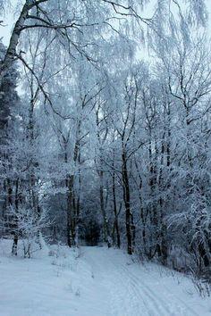 Winter Wonderland, Parchim Germany