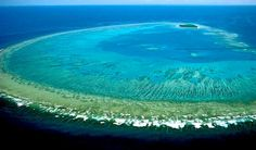 The Great Barrier Reef, located off the coast of Queensland, Australia, is the largest coral reef system in the world, consisting of over reefs and Perth, Brisbane, Melbourne, Sydney, Maui Vacation, Vacation Spots, Cairns, Great Barrier Reef Tauchen, Tasmania