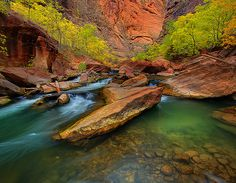 Zion National Park. You don't have to go far to visit one of the most beautiful parks in the U.S. I love this place!