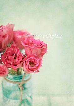 Blush   Flickr - Photo Sharing!