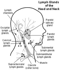 Techniques to Use at Home To Stimulate Lymphatic Drainage — Unravelling Complex Chronic Illness