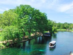 Explore beautiful Spring Lake on a Glass Bottom Boat Tour! Glass Bottom Boat, Texas State University, Spring Lake, Clear Lake, Lake Water, Texas Travel, Crystal Clear Water, Boat Tours, Wine Country