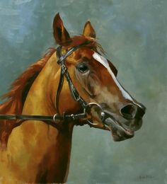 LB Armanii (arab racehorse), oil on board, 9 x 10 inches. £150 unframed.