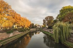 Autumn in Strasbourg is so beautiful