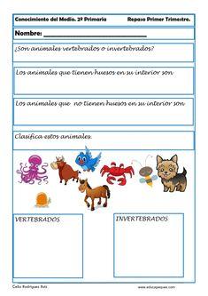 Second Grade, Montessori, Teen, Map, Nature, Kids, Animals, Texts, Animal Science