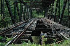 Overgrown and abandoned railway bridge.