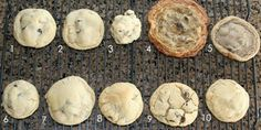 What went wrong with these cookies? A chart to tell you how to fix your cookie...