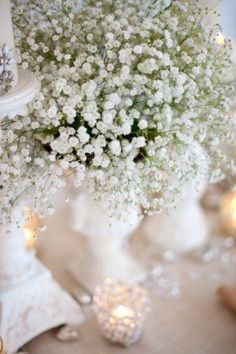 And don't forget Baby's Breath.  It is a great inexpensive filler if you need it.  Apparently there is an annual baby's breath that you can grow and it takes 60 days if you are in the right zone.