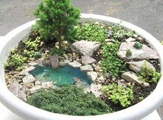 Fairy Garden idea Mini garden with mini pond! Mini Fairy Garden, Fairy Garden Houses, Gnome Garden, Dream Garden, Planter Garden, Garden Ponds, Fairies Garden, Dish Garden, Koi Ponds