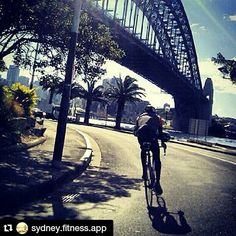 Tags: #bicycle #bikes #bikelife #biker #fit #anchor #anchorcafe #anchorrestaurant #anchorestaurant #milsonspoint #kirribilli #lavenderbay #northsydney #northshore #mosman #sydneylunapark #sydneyrestaurants #sydneycafes #restaurants #cafes #restaurant #cafe  Cycling under the Sydney Harbour Bridge  ANCHOR Cafe & Restaurant for a rest just up the corner of Alfred & Lavender Street while you have your hand roasted  COFFEE or a nice hot TEA  if hungry then you can eat an authentic  PIZZA & PASTA…