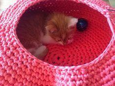 Lily Razz: Crocheted Cat Nest