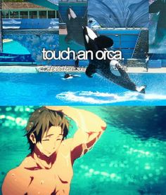 Makoto is the ONLY orca I wanna touch...and yes, I DO want to touch him *^*