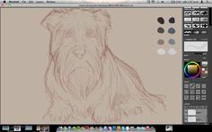 Drawing Application, Toned Paper, Colored Pencils, Dog, Drawings, Diy Dog, Sketches, Colouring Pencils, Crayons