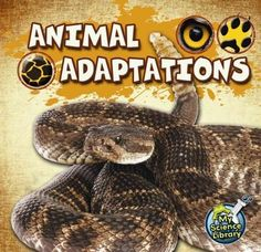 Looks animal adaptations and how these changes to the way that different species look and act help them to survive in their environments.