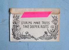 Storms make trees take deeper roots.