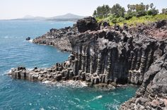 Jungman Lava Columns Jeju Korea