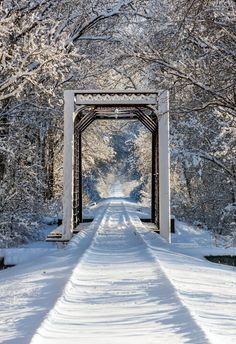 Mooresville, Indiana - Snowy Train Trestle - An iron train trestle and railroad tracks are covered with snow in wooded, wintry scene.