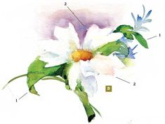Watercolor: Setting Up and Painting a Floral Still Life - Web Features - Blogs - Artist Daily