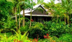 Coco`s Cottage Byron Bay Hinterland, a Bangalow Cottage | Stayz