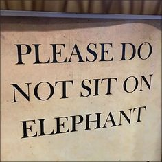 Please Do Not Sit On The Elephant