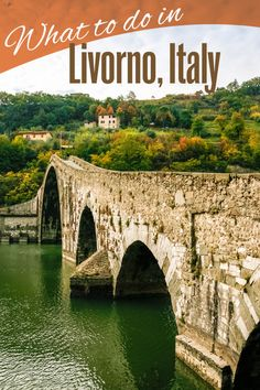 Livorno Italy Excursions. Here are some of the Livorno recommendations from our experts to expand your horizons and make you look like the travel savant with your friends.