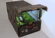 """Art ::: Miniature Landscapes Encapsulated within Steamer Trunks. For her series of works titled """"Travelling Landscapes"""", artist Kathleen Vance created miniature landscapes inside weathered steamer trunks and vintage travelling cases. Steamer Trunk, Vintage Suitcases, Colossal Art, Assemblage Art, Land Art, Small World, Box Art, Art Boxes, Installation Art"""