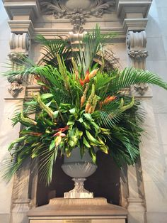 Heliconia, eremurus and palm tree leaves, August 8 2015.