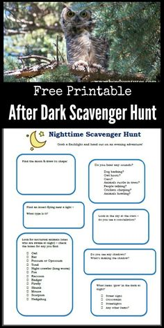Grab a flashlight & see what happens in the dark with this FREE printable Nighttime scavenger hunt for kids, tweens & teens! Fun idea for learning about nocturnal animals too. Great idea for a summer night or birthday party game for kids too! Backyard Scavenger Hunts, Scavenger Hunt List, Scavenger Hunt Birthday, Scavenger Hunt For Kids, Bridal Party Games, Birthday Party Games For Kids, Summer Activities For Kids, Family Activities, Indoor Activities