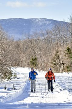 Cross country skiing on trails by Medawisla (AMC). Maine Winter, Xc Ski, Outdoor Centre, Ski Rental, Nordic Skiing, Visit Maine, Canoe Trip, Cross Country Skiing, Nature Center