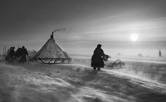 """Habitante da península de Yamal, na Sibéria by Sebastião Salgado (Source: Sebastião Salgado lança projeto """"Genesis"""", que registra tribos e paisagens isoladas)"""