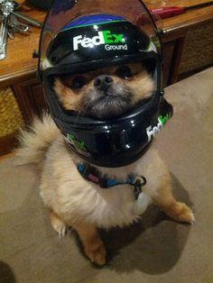 Fedex Racing #safteyfirst #Fedex