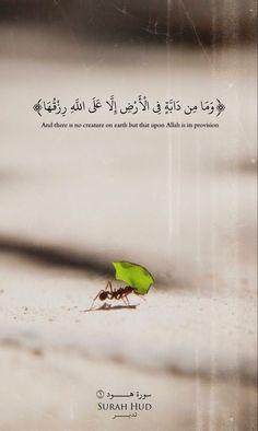Allah is the best creator Beautiful Quran Quotes, Quran Quotes Inspirational, Islamic Love Quotes, Muslim Quotes, Religious Quotes, Arabic Quotes, Coran Quotes, Hijrah Islam, Quran Karim