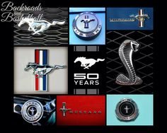 50 years of Ford Mustang logos Collage fine art home decor wall art photo print by Backroadsandbball on Etsy https://www.etsy.com/listing/190284904/50-years-of-ford-mustang-logos-collage
