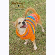 Bohemian Dog Sweater Colorful Warm and Cozy Knitted Cotton DK816 by Myknitt (1)