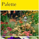 Color in the Garden- How to Choose Your Garden Palette