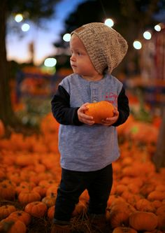 "From ""pinkpistachio.com"" :: pumpkin8 I ♥ all her photographs!  She captures life so well:)"
