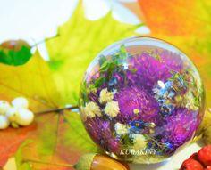 Сентябрьские краски 2016 г – 40 фотографий