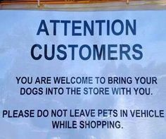Please don't leave pets in car