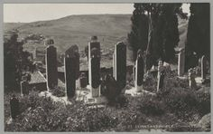 Constantinople. Cimetiere d'Eyoub. [Istanbul (Turkey): Eyüp Sultan Mosque Complex Cemetery]. Metropolitan Museum of Art (New York, N.Y.). Department of Islamic Art. Ernst Herzfeld Papers. #graveyard #cemetary