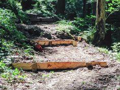 neue Stufen auf dem Wanderweg