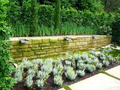 Check out these 75 beautiful and inspiring garden path ideas. Small and large paths and walkways in garden settings. Garden Park, Diy Garden, Garden Landscaping, Garden Ideas, Small Gardens, Outdoor Gardens, Path Ideas, Walkway Ideas, Flower Garden Images
