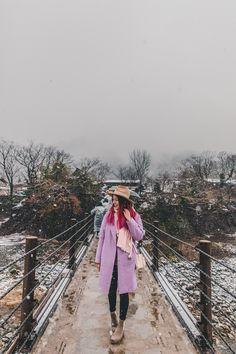 Shirakawago Snow November 16