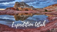 Epic USA Road trip - Highlights of California, Utah and Nevada - October. Capitol Reef National Park, Joshua Tree National Park, National Parks, Coyote Buttes South, Nevada, Las Vegas, Cottonwood Canyon, Canyonlands National Park, Utah Usa